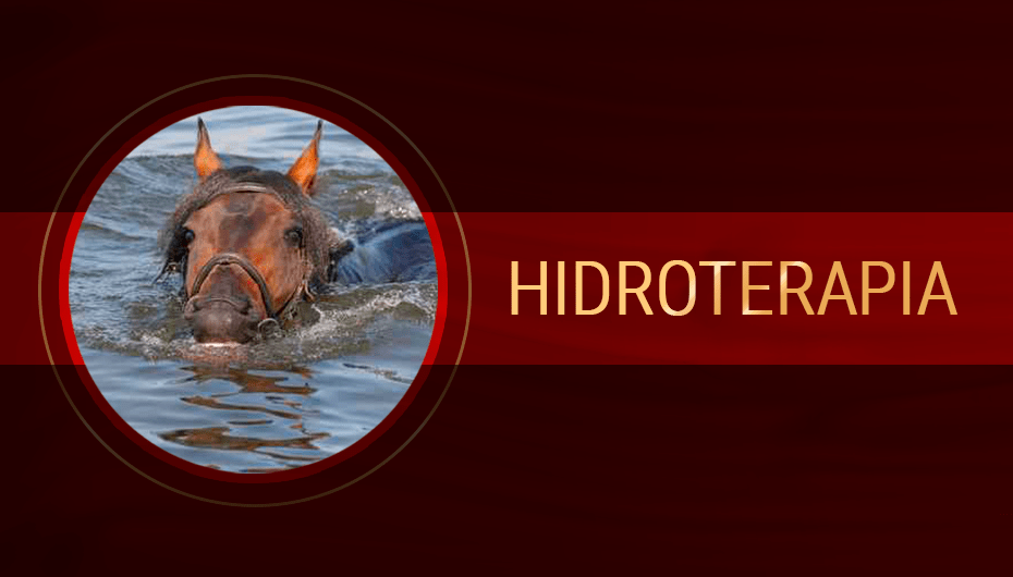 Hidroterapia.png