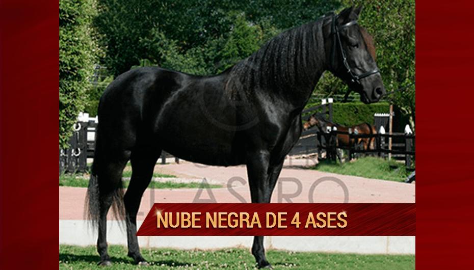 Nube-Negra-de-4-Ases.png