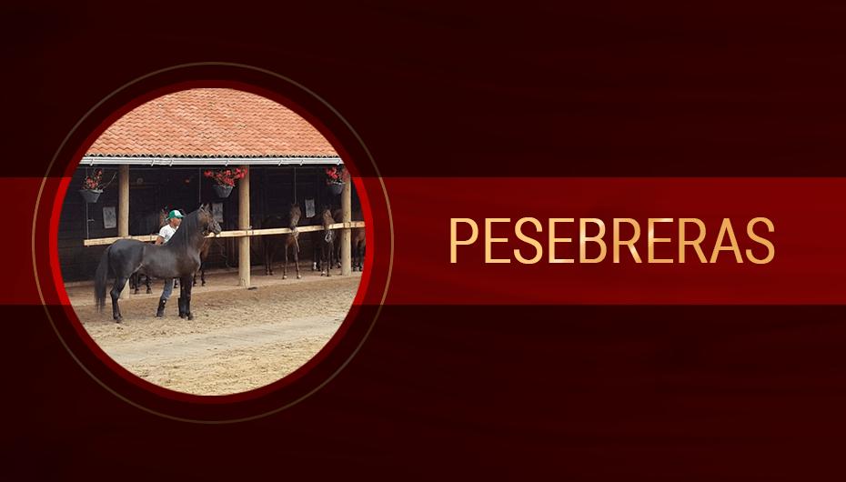 Pesebreras.png