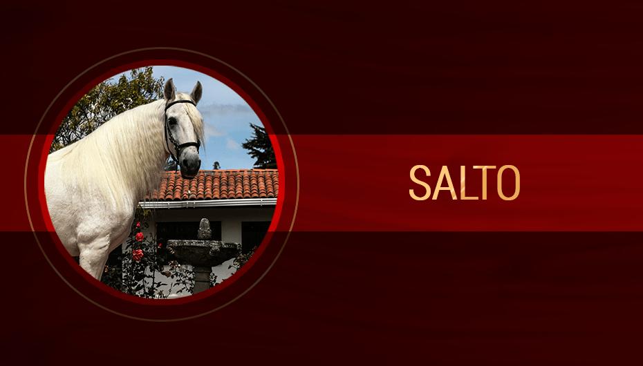 Salto.png