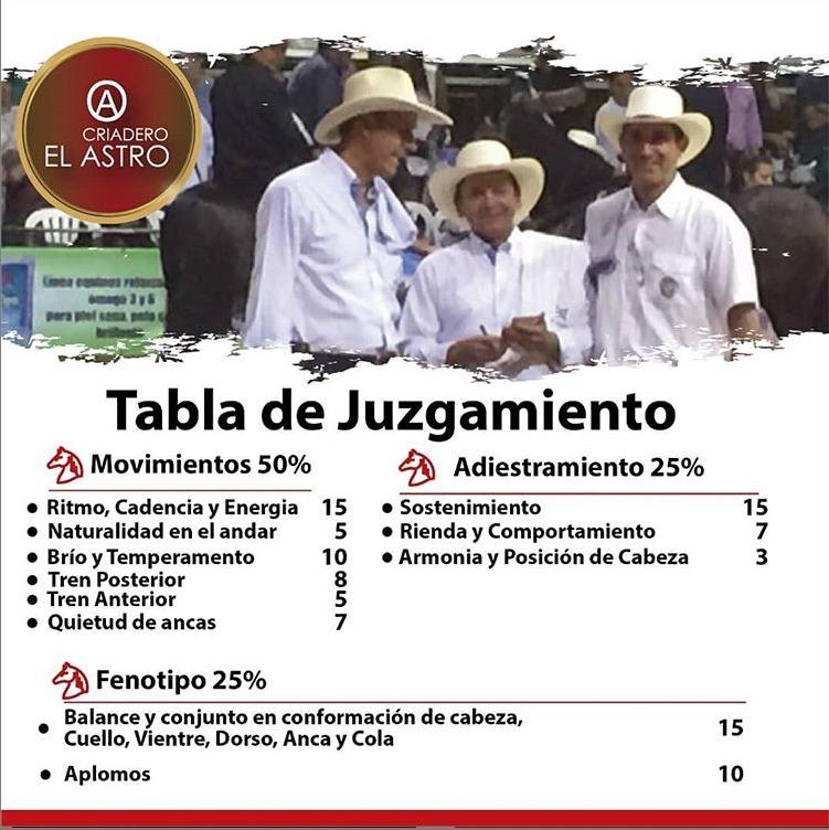 La-tabla-de-juzgamiento-para-caballos-y-jinetes-en-pista..jpeg