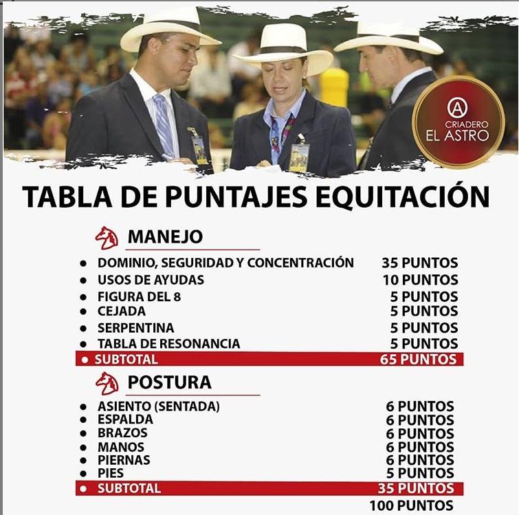 La-tabla-de-juzgamiento-para-jinetes-y-amazonas-en-pista..jpeg