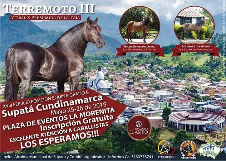 XVIII EXPOSICIÓN EQUINA SUPATÁ XVIII FERIA EXPOSICIÓN EQUINA GRADO B. SUPATÁ CUNDINAMARCA MAYO 25,26 DE 2019, PLAZA DE EVENTOS LA MORENITA, INSCRIPCIÓN GRATIS, EXCELENTE ATENCIÓN A CABALLISTAS, ¡¡¡LOS ESPERAMOS!!!